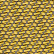0105 Grey canary
